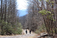 Woodstock NY / Abandoned Hotel Hike / Record Store Day - April 16 2016 (bradye21) Tags: mountain ny newyork abandoned nature forest hotel store spring ruins scenery day hiking buddhist hike trail monastery record woodstock rsd 2016 recordstoreday