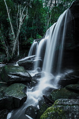 Middle Somersby Falls (robertdownie) Tags: trees light water creek flow waterfall moss rainforest sandstone rocks long exposure curtain australia falls nsw newsouthwales centralcoast cascade tranquil gosford trickle somersby brisbanewaternationalpark