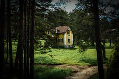Zlatibor-0803 (Jimmie21114) Tags: house forest cotage zlatibor