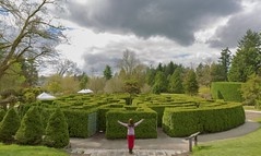 Collection of paths (yuanxizhou) Tags: park trees sky canada green beautiful vancouver clouds canon garden photography lights spring seasons britishcolumbia scene maze vandusen