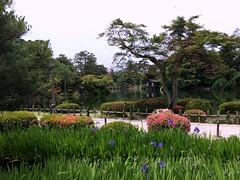 Kenroku-en Garden #5 in Kanazawa (Fuyuhiko) Tags: city garden 1 town kanazawa kenrokuen ishikawa    pref