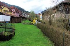 Todtnau (the last don) Tags: germany village schwarzwald todtnau