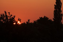 sunset June 5th 2016 (Themagster3) Tags: sunset sun contrast redsky photosof