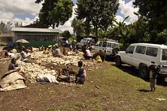 Community-based Cassava Processing Center (CCPC) in Katana, Bukavu (IITA Image Library) Tags: cassava bukavu manihotesculenta cassavaprocessingcenter