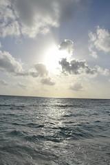 Jumeirah Dhevanafushi_0432 (Simon_sees) Tags: travel vacation holiday island tropical maldives luxury 5star jumeirah dhevanafushi