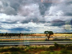 (marisalo93) Tags: road trip viaje cloud colour tree arbol mood camino carretera cloudy frio nube castilla mancha