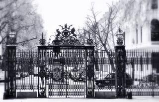 _majestic fence