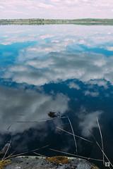 (lotl.axo) Tags: lake nature water clouds reflections germany landscape deutschland see wasser natur wolken landschaft mecklenburgvorpommern agfavista spiegelungen travelphotography tollensesee reisefotografie mecklenburgischeseenplatte vscofilm