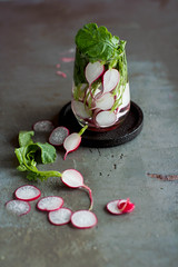 Radish (dominika lugin) Tags: vegetables fresh vegetarian healthyfood