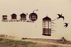 Nuestros sueños no caben en sus kárceles (Felipe Smides) Tags: mural intervencion buenosaires streetart felipesmides graffiti libertad bird carcel tortura freedom riot protesta pintura calle street smides lobatomía loba