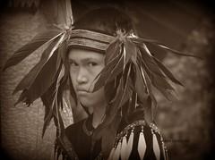 Aboriginal day, young dancer - Copy.jpgSIGNED (MMHEWSTAN) Tags: boy portrait sepia feathers dancer firstnations aboriginal powwow