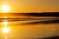 Sunset on Dog Beach, Coronado,CA. (C.Dover) Tags: sunset northisland coronado dogbeach califonia