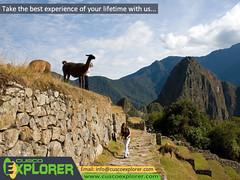 MACHU PICCHU TOUR 2 DAYS (Cusco Explorer) Tags: travel peru machu picchu cusco enjoy trips machupicchu tours journeys cuscoexplorer