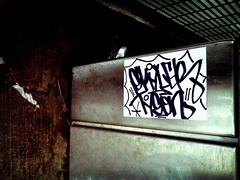 Skyler Tyson (ayeelel46) Tags: chicago graffiti sticker all tag slap skyler handstyle flickrandroidapp:filter=tokyo