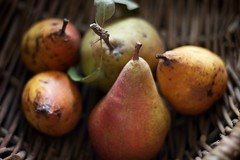 poires (filzofi) Tags: stilllife fruit pear naturemorte poire panier