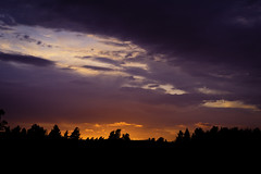 Night (EmilJoh) Tags: trees houses sunset tree night clouds canon sweden nightsky