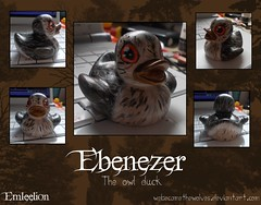 Ebenezer the Owl Duck (Emleelion) Tags: bird animal woodland toy design duck woods pattern vinyl rubber plastic novelty gift ducky wise custom creature item duckies customised twitwoo