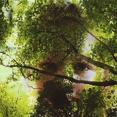 :) (liv_1398) Tags: trees baby green eye nature girl beautiful beauty photoshop children eyes child little edited small young overlay micro edit