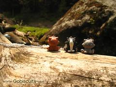 Miau&Miau&Miau (Gabiscuits) Tags: cats cute mexico design handmade kittens jewelry fimo clay kawaii sculpey etsy joyeria gabiscuits