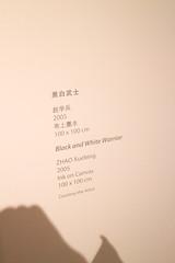 Rock Bund - From Gesture to Language (11) (evan.chakroff) Tags: china art shanghai exhibit exhibition artexhibit evanchakroff rockbund chakroff