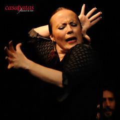 La-Truco-1313 (Casa Patas) Tags: madrid en espaa casa flamingo unesco espana patas artistas shows flamenco conciertos vivo espectaculos   directos bailaoras  casapatas  cantaores