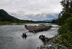 Vedder River Scene (Pat's Pics36) Tags: canada river landscape britishcolumbia chilliwack vedderriver nikond7000 nikkor18to200mmvrlens