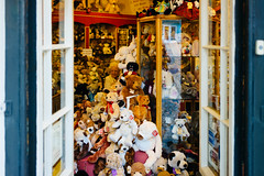Teddy Bears, 1000's of 'em (munkt0n) Tags: shop teddy bears hill norfolk norwich elm