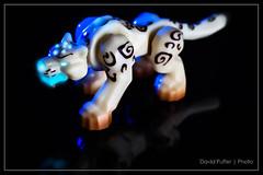 Spirit Beast. (Puffer Photography) Tags: toys worldofwarcraft videogames actionfigures minifigs megabloks
