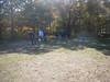 GreyhoundPlanetDay2010005