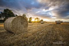 _MG_0335 (donegalblaze) Tags: autumn ireland irish stone farm farming harvest september hay agriculture inishowen codonegal castleforward newtoncuningham