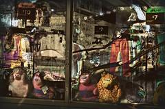 Claymore's Lament (Paul B0udreau) Tags: canada d5100 digitalart gimp hypothetical grimsby layer master niagara nikkor1855mm nikond5100 nikon ontario paulboudreauphotography photomanipulation photomatix reflection ribbet samsung samsungmaster shopfront tonemapping stuffedanimals window gianttiger digitalartscenecertifiedexcellence netartii netartiispecialaward shockofthenewpremiereaward sotn shockofthenew