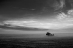 Foggy morning (Miklos Rabi) Tags: gr ricoh artlegacy