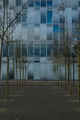 Eiszeit in Neu-Oerlikon (szfotografie) Tags: park modern grau architektur zürich blau bäume glas fassade oerlikon spiegelungen eiszeit