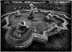 ...Rome... (sermatimati) Tags: acqua lumaca piazzanavona bernini atmosfera giochi turisti delfino magia romani etiope fontanadelmoro giacomodellaporta fontanediroma stadiodomiziano