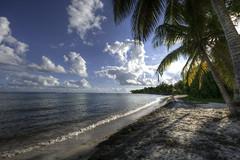 . (Cyrco46) Tags: sainteanne crépuscule plage guadeloupe antilles océan