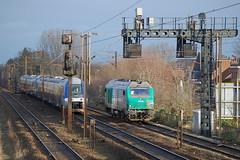 BB 75111 / Hazebrouck (jObiwannn) Tags: train locomotive prima fret ferroviaire