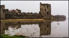after the flood... (bevscwelsh) Tags: northwales flintcastle sonynex6 sonye35mm