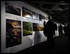 DSC06447 (Bob Taylor002) Tags: london candid southbank nationaltheatre landscapephotographeroftheyear