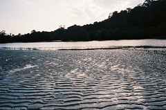 Peace (roodixx) Tags: sea colour film water 50mm sand voigtlander ripples 135 nokton f15 bessar3a kodakektar100