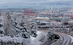 Just A Dusting (John Westrock) Tags: road seattle city morning trees winter snow canon cloudy cranes pacificnorthwest washingtonstate canonef100400mmf4556lisusm canoneos5dmarkiii
