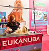Eukanuba clipping (1 of 1)small (Photo Gal 2009) Tags: pink blue dog canine redhead dogshow redhair orangehair nec 2014 crufts showdogs doggrooming necbirmingham topdogs discoverdogs doghairstyle alisondavies thegroomroom cruftsdogshow dogshowuk dogshowengland necbirminghamcrufts crufts2014 thegroomroomcrufts2014 eukanuba2014 eukanubatradestandcrufts eukanubacrufts2014 eukanubaexhibitionstandcrufts2014 eukanubacrufts doggroomercrufts2014 petsathomecrufts discoverdogscrufts2014 redcockercrufts necbirminghamcrufts2014 cruftsdogs2014 dogshow2014 ukdogshow2014 redheadcrufts advertisingcrufts2014 dogs2014 cruftsdogshow2014 necbirminghamdogshow uktopdogs exhibitionnec dogsnec photogal2009 alisondaviesdogs alisondaviescrufts