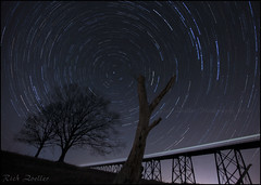 **STAR STORM** (~*THAT KID RICH*~) Tags: nightphotography trees cold night canon landscape star space fineart rich viaduct explore deadtree astrophotography rotation fullframe startrails polaris tkr zoeller thatkidrich 5dm2 richzoeller starstorm