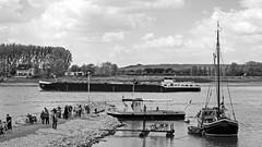 Monheim am Rhein - Piwipper Btchen + Aalschokker / NRW / Germany (KL57Foto) Tags: pen river germany boot am wasser olympus nrw fluss rhine rhein schiff strom rheinland rhineland monheim ep1 aal kreis historisch mettmann aalschocker stdt fischerei monheimamrhein stadtmonheim kl57foto stadtmonheimamrhein