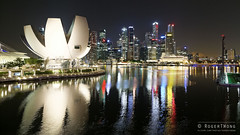 20140505-09-ArtScience Museum night reflections.jpg (Roger T Wong) Tags: building museum night reflections singapore lotus 2014 marinabay canon24105f4lis canonef24105mmf4lisusm canoneos6d artsciencemuseum rogertwong