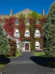 New House (bbusschots) Tags: ireland summer maynooth pathway kildare localhistory historicbuilding spcm
