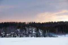 dream fields (Kalense Kid) Tags: winter snow tree forest landscape sweden skedvik