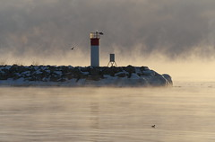 Lighthouse in the Mist (Gavin Edmondstone) Tags: lighthouse mist ontario lakeontario oakville bronteharbour cans2s