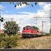 232 690, Langenbach, 04.Sept 2006