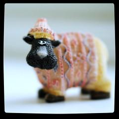 Year of the Sheep (Squatbetty) Tags: silly macro cute sheep chinesenewyear lunarnewyear woolly 2015 blipfoto blipped