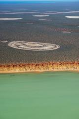 Shark Bay WA - DSC3183
